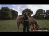 Мелисса с лошадками