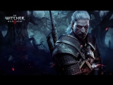 The Witcher 3: Wild Hunt #2