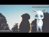 С Днём Матери! Суперская песня про маму до слёз ZOOBE Муз Зайка.mp4