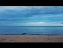 Даже улитка на море в Евпатории, а ты работаешь :)