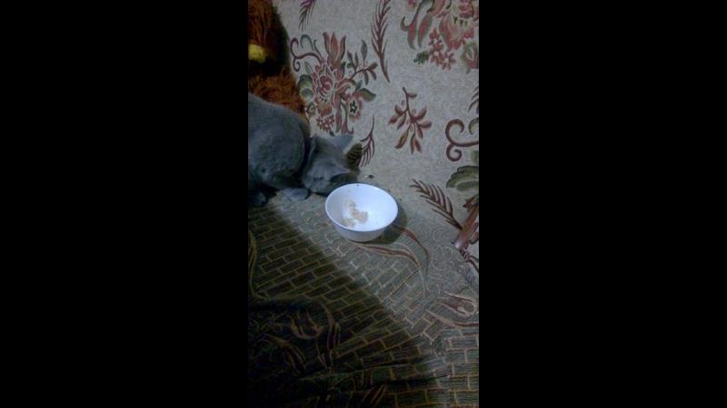 Пэпа ест кашку