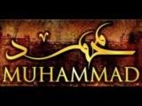 Тимати-Ислам