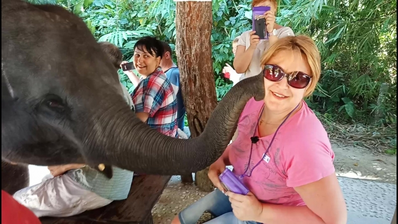 слоненок-целовашка!