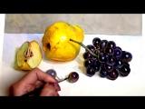 4 Как нарисовать айву и чёрный виноград акварелью.Lizalegina art