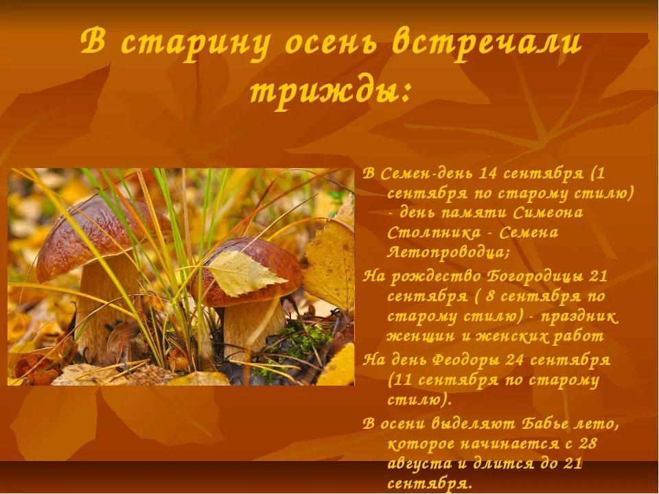 https://pp.userapi.com/c841627/v841627164/1625c/NfeNg4wFWbQ.jpg