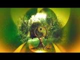Музыка для Восстановления Жизненной Силы ☯ Гармония Инь Ян ☯ Лучшая Релакс Музык
