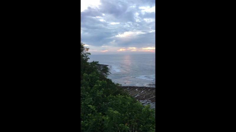 Bali trp