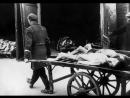 Освенцим  самые ужасные  преступления против человечности ЭТО НЕЛЬЗЯ ЗАБЫТЬ ДЕТИ ВНУКИ 18+ВНИМАНИЕ ФИЛЬМ СОДЕРЖИТ СЦЕНЫ НАСИЛИЯ