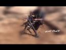 Хусит из миномёта обстреливает скопление хадистов в провинции Мариб.