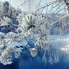 Рождественские каникулы... Еланда-Алтайское