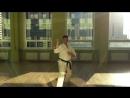 Bu Do Tamashi ryu японская версия Vo Dao Thien Than