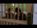 Фильм.Доспехи бога.1986.Джеки Чан.HD