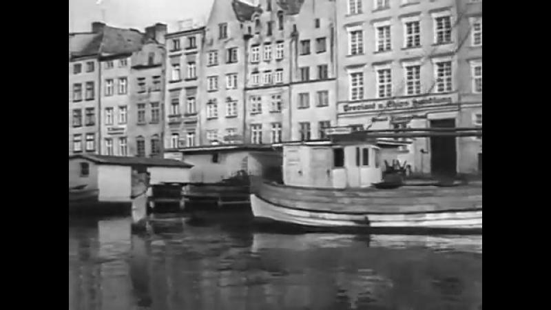 Damals zu Hause ▪ Elbing ▪ Elbląg ▪ Ostpreußen 1930's_1955
