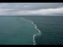 Два встречных течения в этом месте не могут слиться так как у них разная плотность Это место называют край света