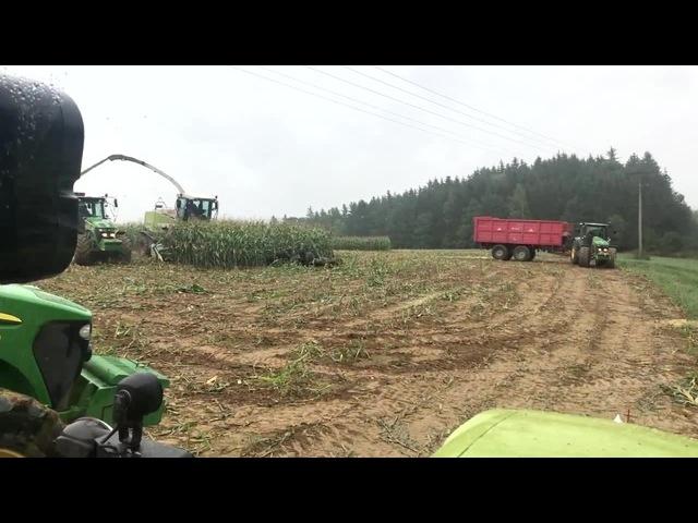 Harvester vs boars