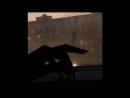 Love 💕 Sinking(feat. Nori)-feverkin