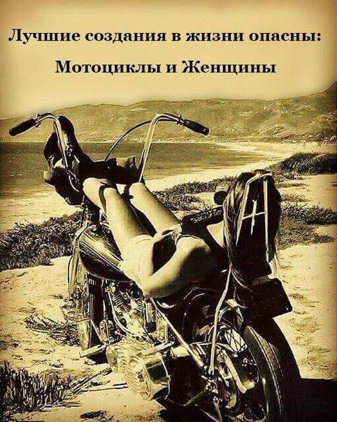 Фото №456244097 со страницы Игоря Шистерова