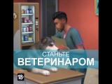 The Sims 4 «Кошки и собаки»: ветеринар