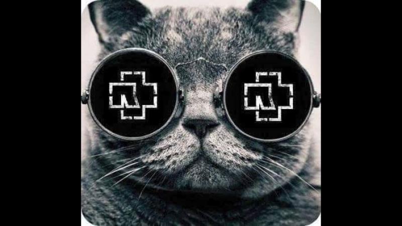 Смысл песен Rammstein. Часть 1