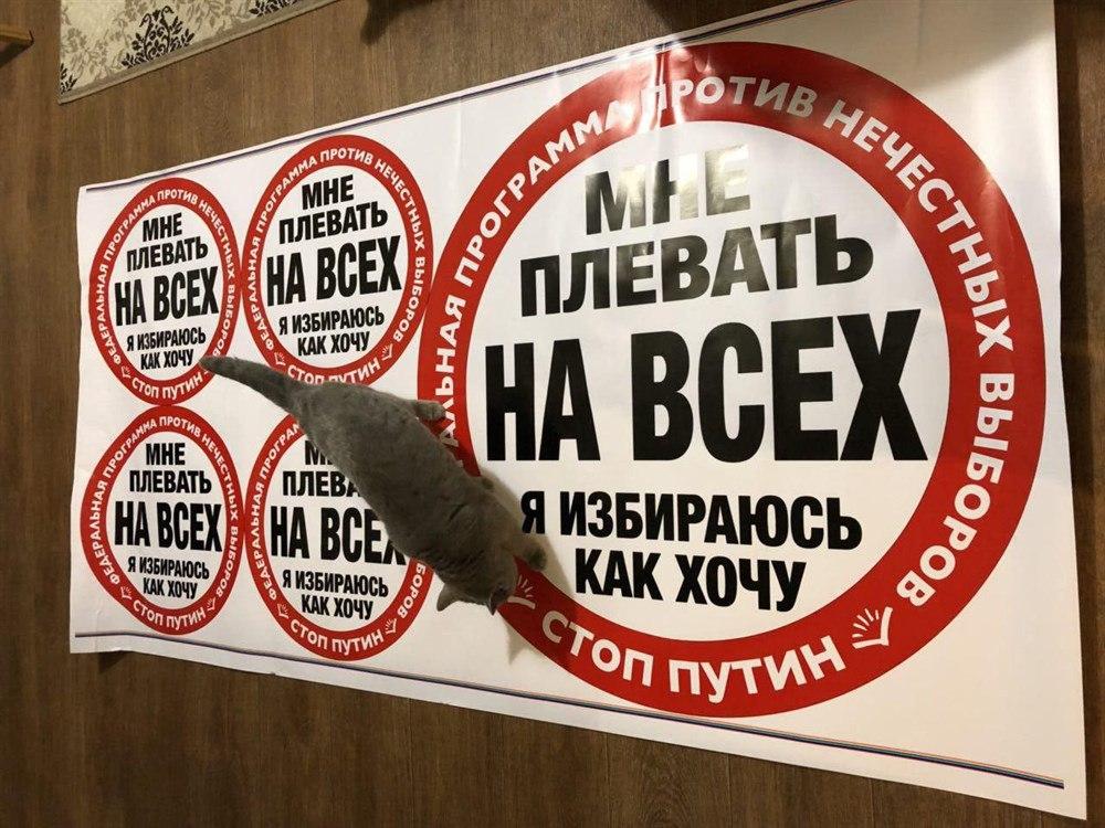 В Томске изъяли стикеры «Стоп Путин. Мне плевать на всех, я избираюсь как хочу»