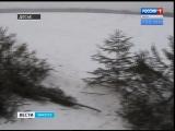 Операция «Ель» началась в Иркутской области