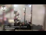 В Красноярском ТЦ хулиганы подожгли пальму