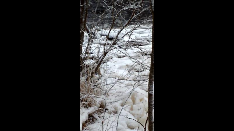 VID_20180128_Старая плотина на Вьюне.