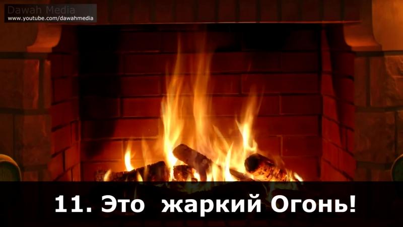 Али Калаев , сура 101 Великое бедствие