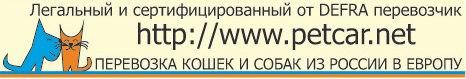 Перевозка кошек и собак из России в Европу