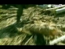 Нарезка видео-клип о сражениях в Чечне и нападении наёмников в горном Дагестане.Песня навеяная войной 18ним парням из ВСРФ.