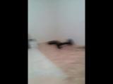 Амир Сафиуллин - Live