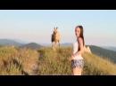 Верблюды-беспризорники в Геленджике попали на видео