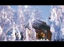 На Белом покрывале января В. Казаченко On white coverlet January V. Kozachenko