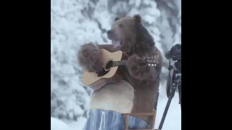 Тем временем где-то в Сибири...