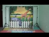 Life Magic Box Vinyl Animal Backdrop Photos Wallpaper Photo Background Backgrounds Photography