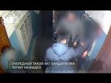 Битва подъездных вандалов с почтовыми ящиками в Магнитогорске попала на видео