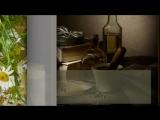 лекарственные травы.swf 1-show0