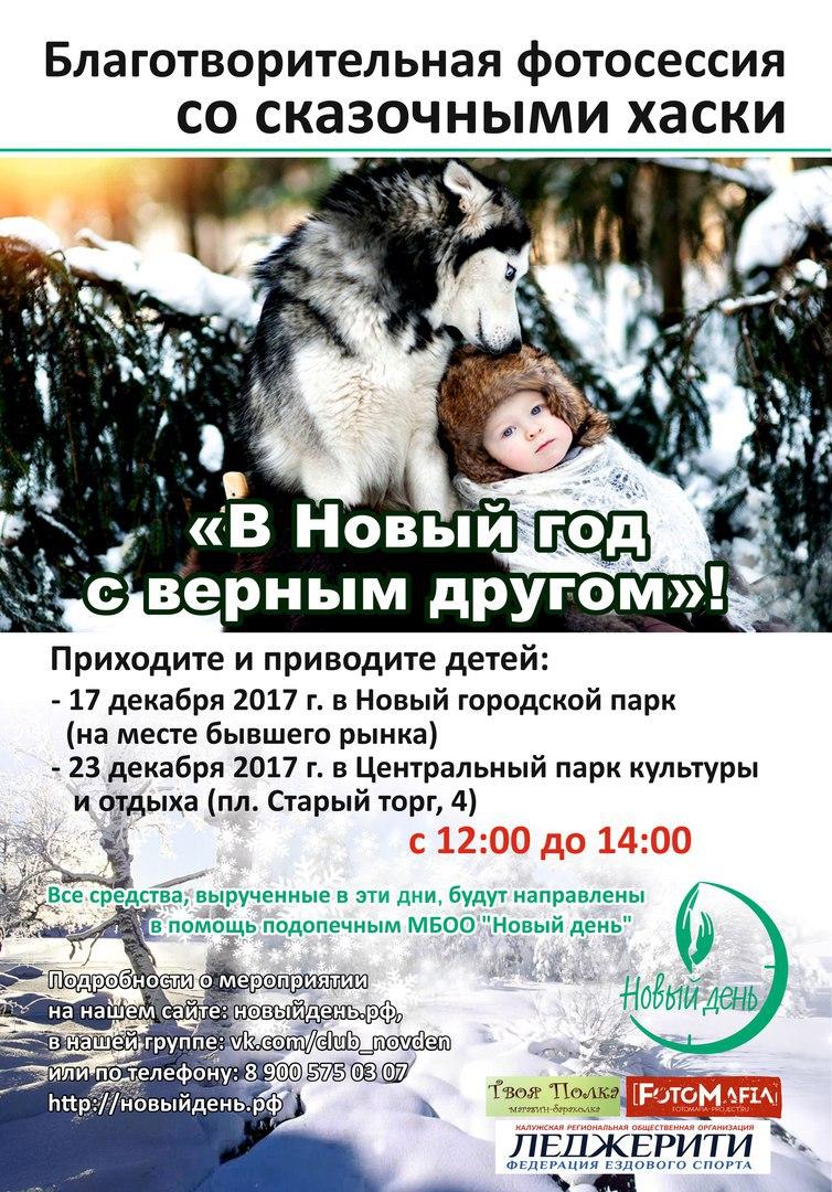 Афиша Калуга Благотворительная фотосессия с хаски