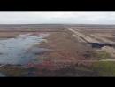 Восстановление торфяных болот в России yklip scscscrp