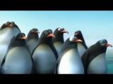 Короткометражный Мультфильм   В единстве сила (3)!