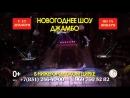 Новогоднее шоу ДЖАМБО в Нижегородском цирке с 23 декабря по 14 января