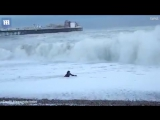 WOMAN SAVES DOG FROM DROWNING IN SEA- RISKS HER LIFE