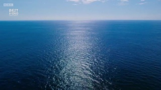 Впечатляющий приквел от BBC Earth о тайнах и природе океана