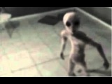 Original Area 51 Film Alive UFO Aliens - Aired First Time Ever 9.11.17 On Kryan Channel
