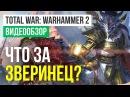 Обзор игры Total War: Warhammer 2