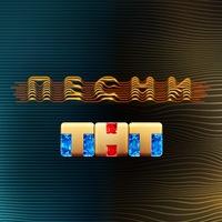 Логотип ПЕСНИ