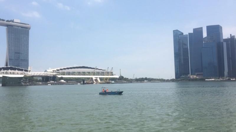 Сингапур. Озеро. Небоскрёбы ☀️