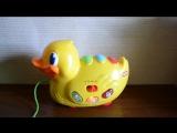 Видео обзоры игрушек - Каталка Музыкальная уточка