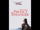 Другой Идеальный Незнакомец художественный фильм 2007 год
