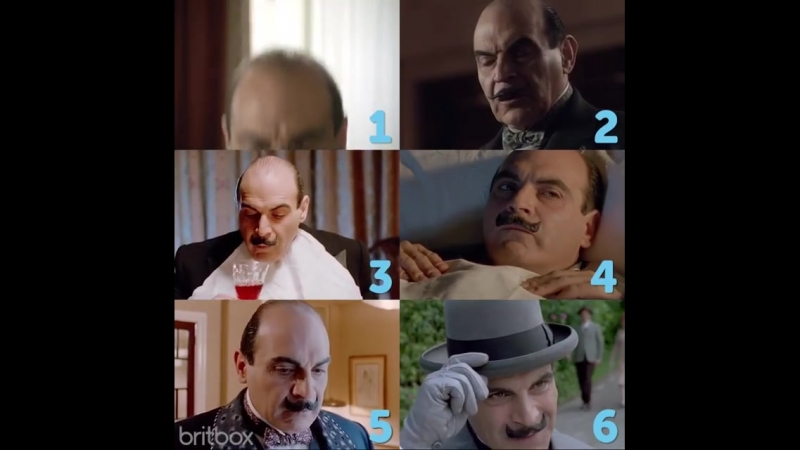 Which Poirot are you today?